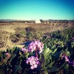 Photo taken at Zmudowski State Beach by iqbal k. on 12/25/2013