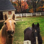 Photo taken at Town of Vestal by Molly Y. on 10/13/2013