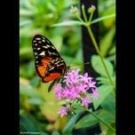 Photo taken at Bloomfield, NJ by Dayene on 8/26/2014