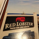 Photo taken at Red Lobster by Trey G. on 1/1/2013