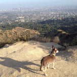 Photo taken at Griffith Park by Micki K. on 5/25/2013
