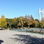 Photo taken at 東京都立 木場公園(Kiba Park) by Shigeru A. on 11/18/2012