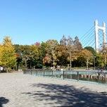 Photo taken at 東京都立木場公園 by Shigeru A. on 11/18/2012