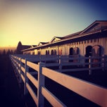 Photo taken at DevonWood Equestrian Centre by Evin R. on 1/20/2014