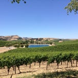 Photo taken at Cuvaison Estate Wines by Billy S. on 6/22/2013