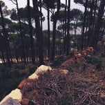 Photo taken at Mount Sanine by Mariam A. on 3/30/2015