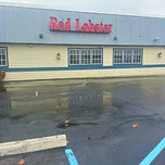 Photo taken at Red Lobster by Sheila B. on 11/23/2012