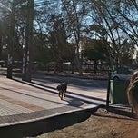 Photo taken at Municipalidad de San Bernardo by Ricardo M. on 6/2/2013