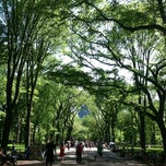 Photo taken at The Central Park Mall by Greg N. on 5/12/2012