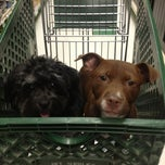 Photo taken at Pet Supplies Plus by Kelly on 3/30/2013