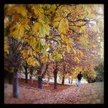 Photo taken at Seğmenler Parkı by Zehra on 11/4/2012