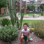 Photo taken at Courtyard Phoenix Camelback by Jeff C. on 8/9/2014