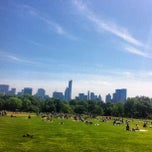 Photo taken at Central Park - Great Lawn by Andre A. on 5/27/2013