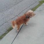 Photo taken at Walking De Wywy by Samantha F. on 8/12/2012