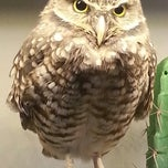Photo taken at National Aviary by Kristin T. on 11/25/2012