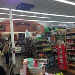 Photo taken at World Market by Nathan P. on 12/20/2012