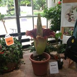 Photo taken at D.C. Smith Greenhouse by Amanda L. on 8/2/2013