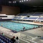 Alberca olimpica clases de natacion df for Clases de natacion df