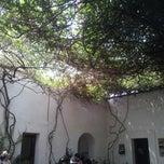 Photo taken at Instituto De Artes Gráficas De Oaxaca (IAGO) by Francisco P. on 7/11/2013