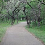 Photo taken at McAllister Park by Yan J. on 4/25/2013