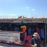 Photo taken at Robert is Here. Fruit Stand & Farm by Daniela M. on 3/30/2013