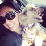 Photo taken at Banfield Pet Hospital by MoniQue on 5/25/2014