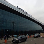 Photo taken at Международный аэропорт Домодедово / Domodedovo International Airport (DME) by Andy N. on 11/23/2013