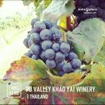 Photo taken at PB Valley Khao Yai Winery by Thitikorn P. on 2/16/2013