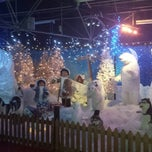 Photo taken at Sefton Meadows Garden Centre by Craig V. on 12/13/2013