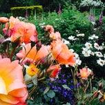 Photo taken at Sexby Garden by Vaida T. on 5/31/2014