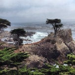 Photo taken at 17 Mile Drive by Dmitry 🔞 on 10/3/2012