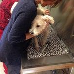 Photo taken at Hickory Ridge Animal Hospital by Steve K. on 11/19/2013