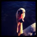 Photo taken at La Flottille by Nat F. on 12/11/2012