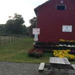 Photo taken at The Collins Creamery by Leah Marie Z. on 9/21/2014