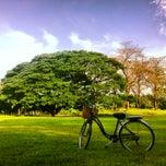 รูปภาพถ่ายที่ สวนวชิรเบญจทัศ (สวนรถไฟ) Vachirabenjatas Park (Rot Fai Park) โดย Adventure G. เมื่อ 6/2/2013
