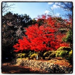 Photo taken at 源氏山公園 by Yankinu on 12/1/2012