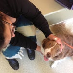 Photo taken at Park Animal Hospital by Mark H. on 5/11/2013