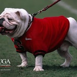 Photo taken at Sanford Stadium by Larry W. on 11/3/2012
