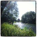 Photo taken at St Neots Camping and Caravanning Club Site by Andy H. on 6/30/2013
