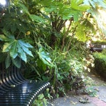Photo taken at St Mary Abbots Gardens by Gatis S. on 7/4/2014