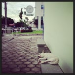 Photo taken at UFAM - Faculdade de Medicina by Igor B. on 1/17/2013