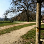 Photo taken at Parcours de footing by Alexandre F. on 4/1/2013