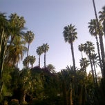 Photo taken at Jardin de Majorelle by Julie F. on 3/15/2012