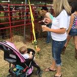 Photo taken at Texas Gatorfest by Chris C. on 9/14/2014