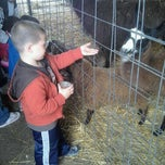 Photo taken at Selmi's Greenhouse and Farm Market by Amy S. on 9/24/2011