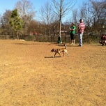 Photo taken at Piedmont Park Dog Park by Josh B. on 2/19/2011