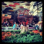 Photo taken at Bellagio Conservatory & Botanical Gardens by Felecia T. on 5/9/2012