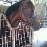 Photo taken at zarzamora ranch by Mayra A. on 6/10/2012