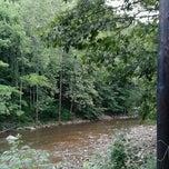Photo taken at Revelle's river resort by Gertjan V. on 7/19/2012