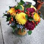 Photo taken at Lotus flowers by Tomoko H. on 10/15/2011